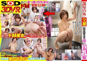 【3】VR 被关在门外的全裸巨乳妹 梨梨花 第三集