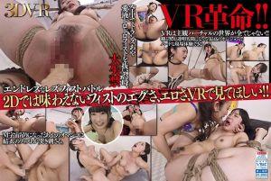 【4】【VR】レズフィストVR