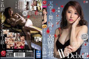 自天空降临的高岭之花 前国际线空姐 春明润 28歳 AV出道!!
