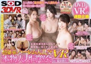 【VR】超豪华后宫大乱交 真正人妻同学会 in温泉旅行 VR -2