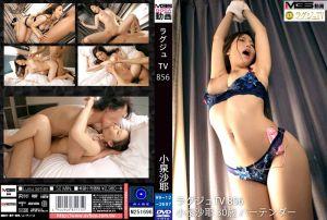 高贵正妹TV 856