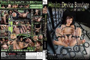 铁管拘束肏爆淫穴 XIII 早川瑞希
