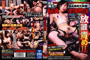 完全撮り下ろし最高级昇天映像!! 秘奥淫爆絶顶放置责め ~逃げられず内部爆発する残酷なプッシー・オルガ~ II