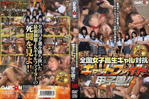 全国女高中生辣妹对抗赛 猫咪战斗甲子园!!