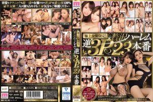 奢侈逆3P后宫肏暴23砲爽翻天!