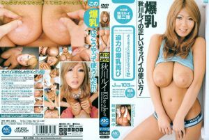 巨乳「秋川诔」Box2 秋川诔