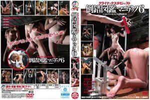 疯狂变态图鑑 6
