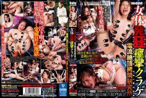 电流绝顶拷问研究所 003 财团千金菊花高潮 小野寺梨纱