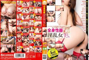 全身性器 淫乱女18人 脚ヌキ/口ヌキ/胸ヌキ/脇ヌキ/マ○コヌキ