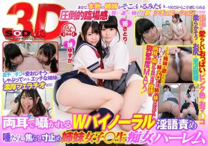 【2】VR 痴女姊妹淫语挑逗后宫幹砲 第二集