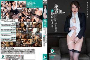 秘书 in… [胁迫套房] Secretary Tamaki(25)仲丘环
