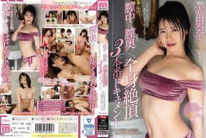 膣中(ナカ)×膣奥(オク)×全身絶顶 3本番ドキュメント 志田雪奈