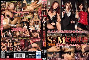 S&M 女神淫虐 4小时精选集