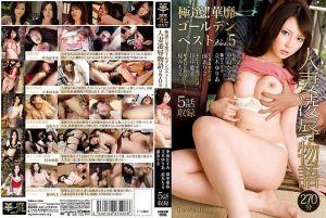 极选!! 奢华最精选 Ver.5 人妻凌辱物语 270分