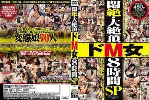 闷絶・大绝顶被虐女8小时 SP(2片装)