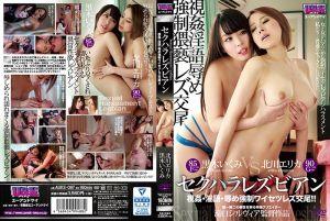 性骚扰蕾丝边 ~视姦・淫语・凌辱 强制猥亵&交尾~