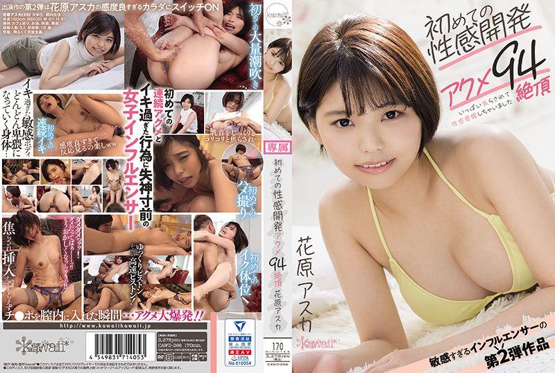 初次性感开发高潮94絶顶 花原飞鸟