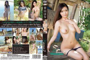 西表报导 青山华