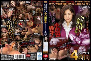 S级弩M女悽惨花丽奴 小口田桂子完整4小时