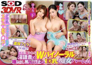 【2】VR 双重淫语挑逗 唾液狂流快感喷发巨乳痴女 第二集