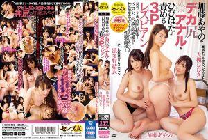 让大槻响与波多野结衣玩弄加藤绫野巨尻的3P蕾丝幹砲