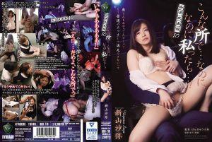 痴汉电影院 10 新山沙弥