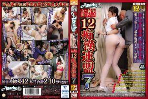 12痴汉大连盟 7