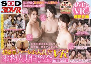 【VR】超豪华后宫大乱交 真正人妻同学会 in温泉旅行 VR -1