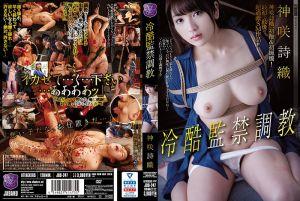冷酷监禁调教 神咲诗织