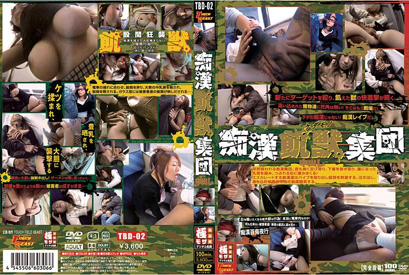 痴汉飢獣(ケダモノ)集団 2