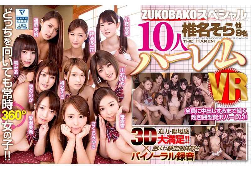 VR ZUKOBAKKO特别版 10人后宫幹砲