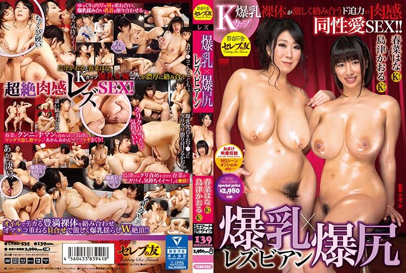 爆乳x爆尻蕾丝边性交 春菜花 岛津薫